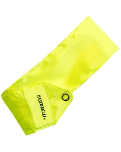Лента PASTORELLI одноцветная флюоресцирующего желтого цвета  4 м